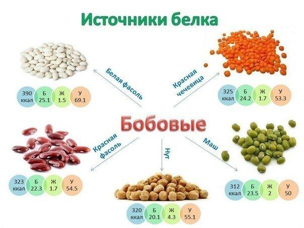 Разнообразные сорта бобовых