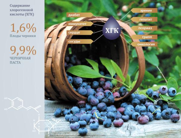 Паста черники – уникальный природный антиоксидантный продукт