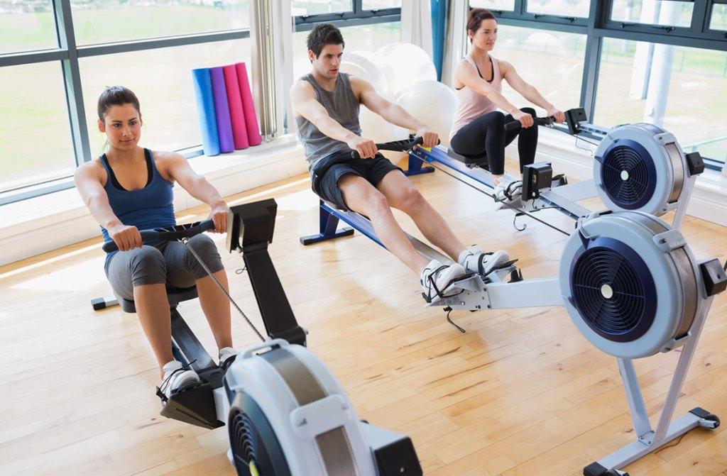 Гребные тренажеры созданы таким образом, чтобы спортсмен во время занятий смог ощутить то, что на самом деле он занимается греблей