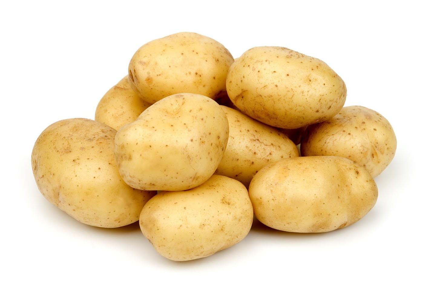 Картофель обладает высокой калорийностью и содержит много крахмала, поэтому от его чрезмерного употребления следует воздержаться лицам, склонным к ожирению и страдающим сахарным диабетом