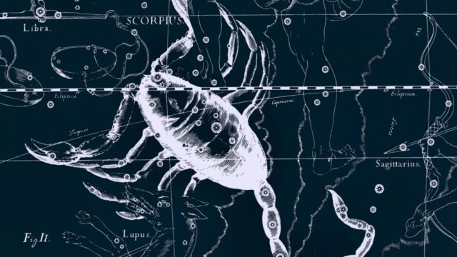 24 октября - 22 ноября — знак зодиака Скорпион