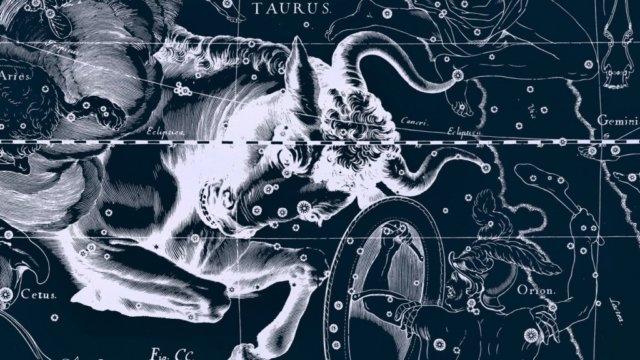 21 апреля – 21 мая — знак зодиака Тельц