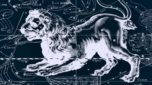 24 июля – 23 августа — знак зодиака Лев